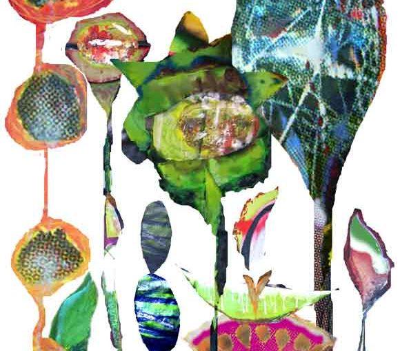 biodiversité illustration par veronique egloff